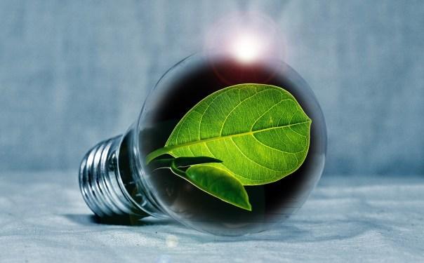 light bulb 2631864 1280 1024x636 Imprimir y ahorrar energía en la oficina pero ¿cómo?