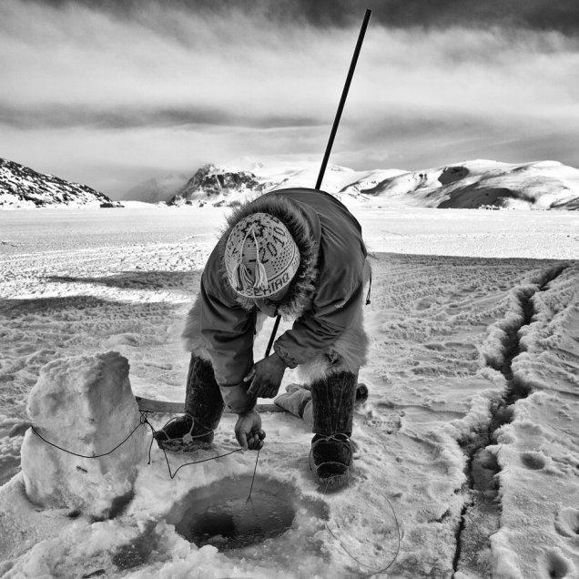 Un pescador inuit de Groenlandia, a la caza y captura de sus presas a través de un agujero perforado en el hielo, en 2011. Inuit es un nombre común para los distintos pueblos esquimales que habitan las regiones árticas de América. Han soportado la vida del Ártico durante miles de años y tienen una gran experiencia para sobrevivir en el hielo. Se calcula que son unas 150.000 personas que llevan una vida nómada, siguiendo las migraciones de los animales que cazan, como caribúes, osos, ballenas y focas. De ellos aprovechan todas las partes posibles para alimentarse, abrigarse, construir viviendas y herramientas para cazar. En los últimos tiempos, el proceso de globalización está produciendo un cambio en sus formas de vida originarias. PHILIPPE GESLIN SURVIVAL INTERNATIONAL