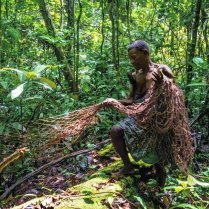 Un cazador de la minoría bayaka recoge sus redes en República Centroafricana, en 2016. Una investigación desarrollada por Survival International ha desvelado cómo grandes ONG de conservación de la naturaleza están financiando abusos y expulsiones de pigmeos bakas y bayakas y otras tribus de la selva en la República del Congo, República Centroafricana y Camerún. SABINE HAMMES SURVIVAL INTERNATIONAL
