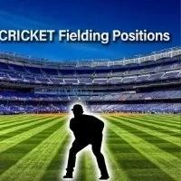 Cricket Fielding Position