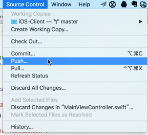 xcode push under source control
