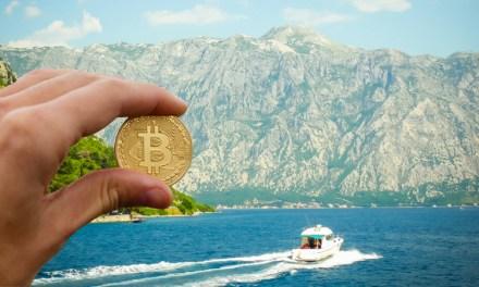 Greenpeace Argentina comienza a aceptar donaciones en bitcoins