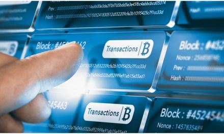 Mycelium crea un nuevo sistema de pago basado en la Blockchain