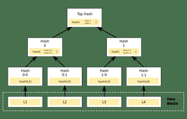 Estructura Arbol Merkle