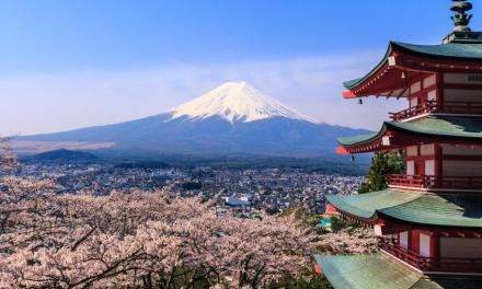 Reguladores japoneses pondrán la lupa sobre casas de cambio de criptomonedas