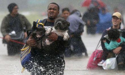 Locutor recauda $50.000 en BTC y Dash para afectados del huracán Harvey en Texas