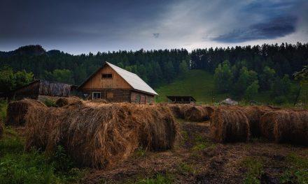 Rusia lanzará programa piloto para el registro de tierras con blockchain