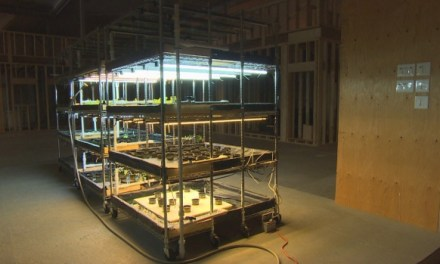 Minar criptomonedas en Canadá ahora también sirve para fines agrícolas