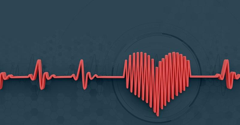 Nueva cartera fría resguarda tus criptomonedas con el latido de tu corazón