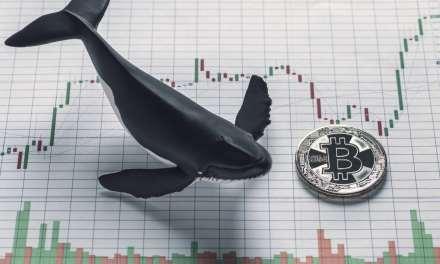 Ballenas de bitcoin han mantenido estable el criptomercado en 2018