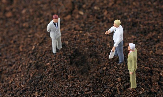 Alcaldía mexicana probará red blockchain para registro de tierras