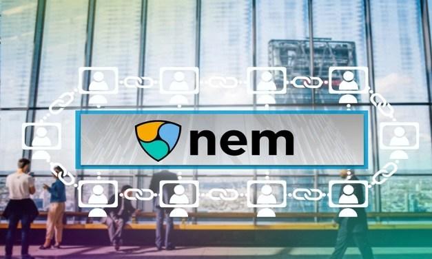Fundación NEM creará equipo para encabezar su reestructuración