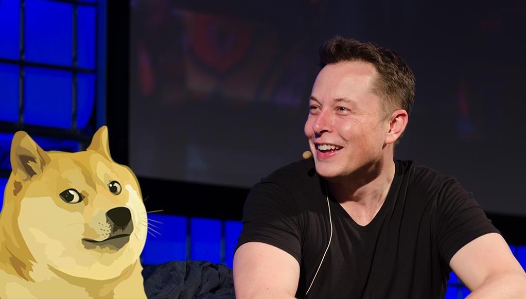 "Elon Musk proclamado nuevo ""CEO de Dogecoin"""