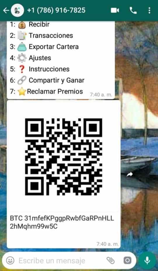 Los usuarios pueden pedir la dirección pública del monedero o el código QR al robot para recibir criptomonedas. Fuente: captura de pantalla / WhatsApp.