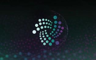 Nueva incorporación en el Iota Fundation