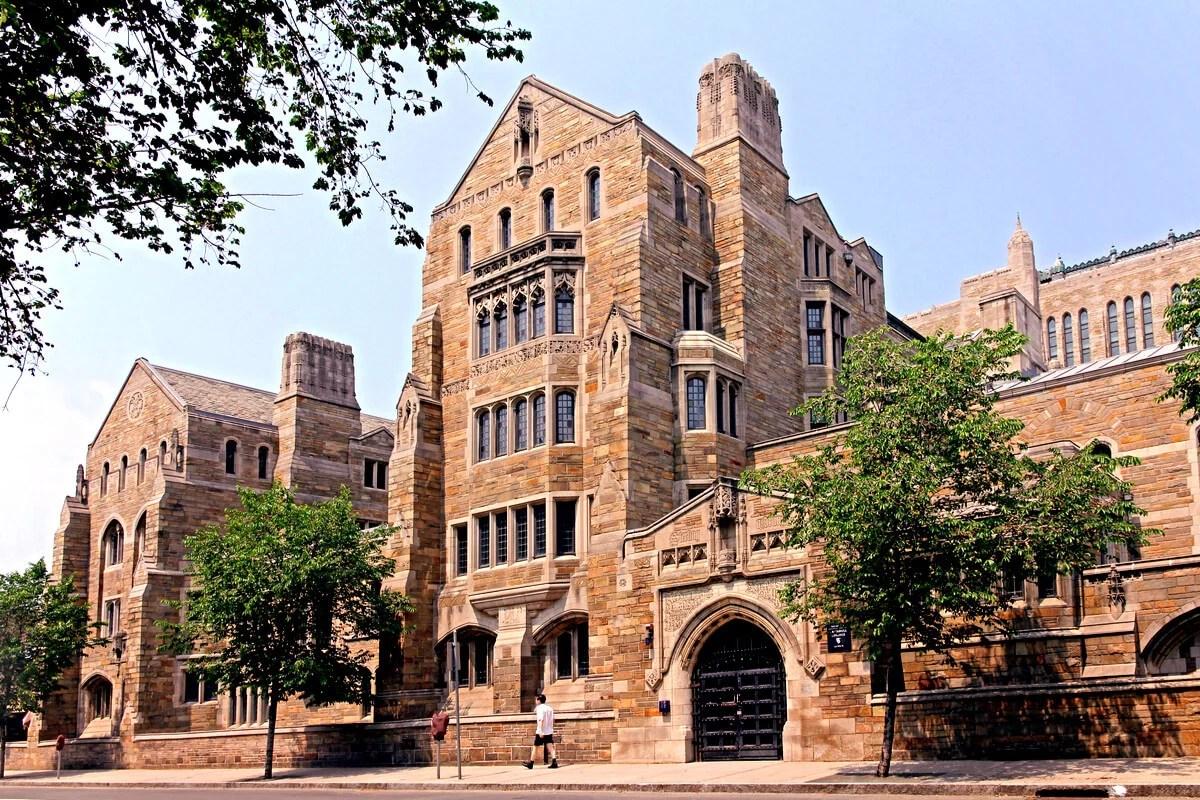Economistas de Yale proponen criterios para predecir el precio de las criptomonedas