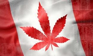 La farmacia canadiense rastreará el cannabis a través de Blockchain en un nuevo programa piloto