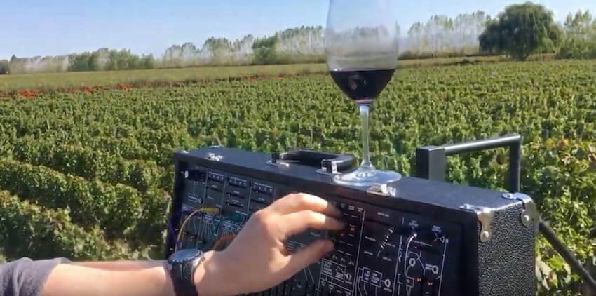 Vinophonic en funcionamiento en el viñedo Costaflores