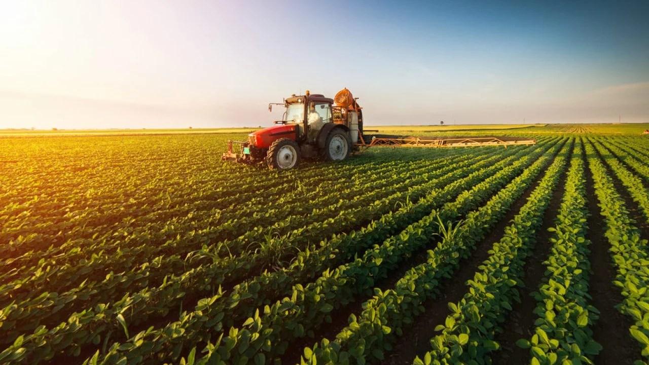 Bitcoin, criptomonedas y blockchain: su valor y uso en las empresas agrícolas