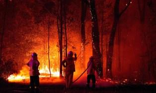 Binance impulsa un programa de donaciones ante los incendios forestales en Australia y lidera la iniciativa con un millón de dólares en BNB
