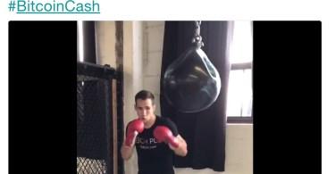 Bitcoin Cash campione di MMA Rory McDonald è il nuovo sponsor ufficiale