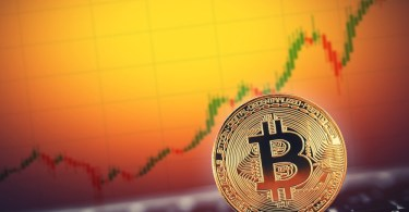 Bitcoin ed i guadagni YTD