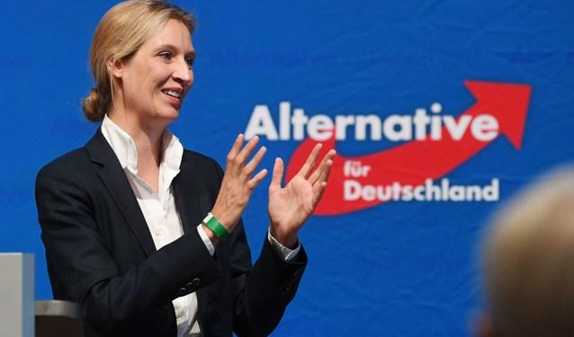 """Γερμανία: Το Afd """"κόβει"""" το χέρι του, ετοιμάζεται για μεγάλα... πράγματα 22"""