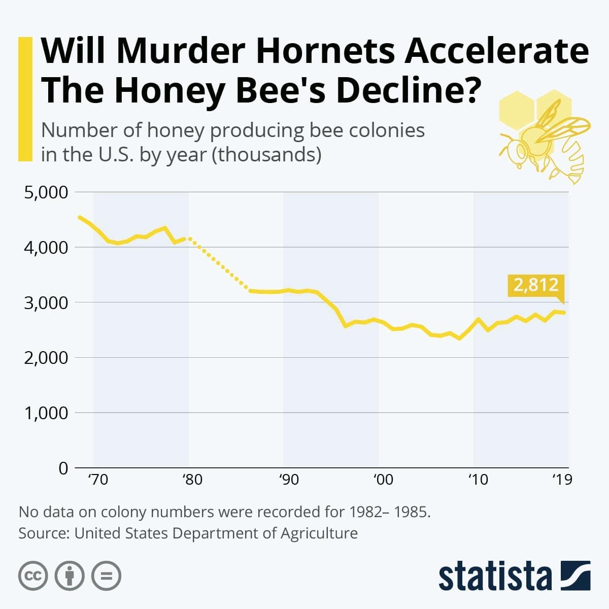 """Σφήκες """"δολοφόνοι"""" επιτίθενται στις ΗΠΑ.-Οι συνέπειες 26"""