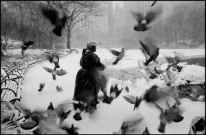 USA. New York City. 1992. Lola in Central Park with birds and snow. - © Bruce Davidson