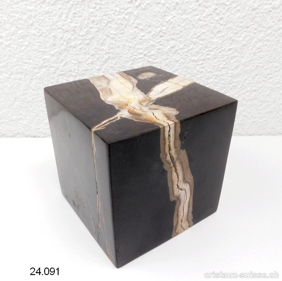 cube bois fossilise bois petrifie env 10 x 10 cm piece unique 1 889 grammes