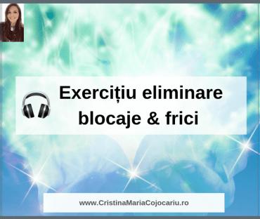 frici-blocaje-obiective-exercitiu-meditatie