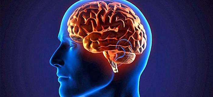 La ciencia prueba que nuestros cerebros reconocen la existencia de Dios