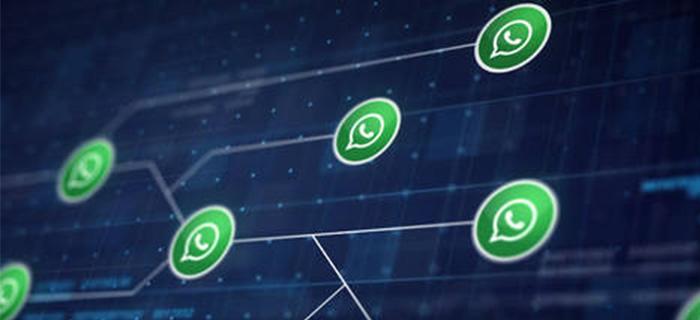 Videollamadas grupales y más en la nuevas actualizaciones de Whatsapp