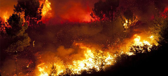 REFLEXIÓN: Incendio Imparable