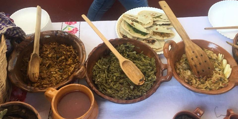 Visita el primer festival de la cocina hidalguense, en Pachuca