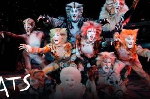 """La obra """"Cats"""" se presentará en Pachuca"""