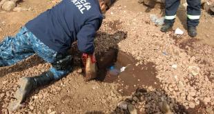 Ataque por ordeña deja un agente fallecido en Hidalgo