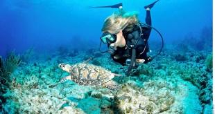 Islas Caimán, edén turístico