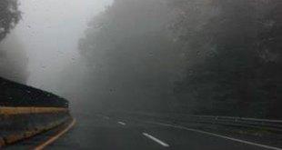 neblina montaña hidalgo