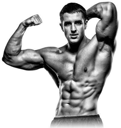 abs - 24 Hour Testosterone Transformation Plan