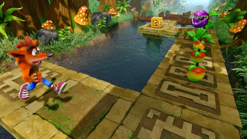 Crash bandicoot (3)