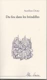 """Résultat de recherche d'images pour """"du feu dans les brindilles dony aurélien"""""""