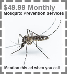 mosquito_coupon