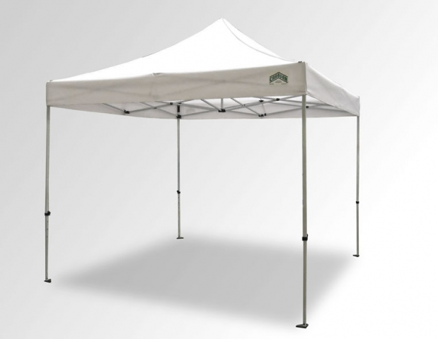 10 x 10 canopy pic