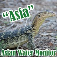 Asia_1