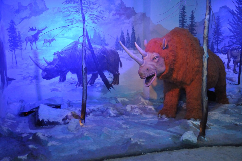 Ice Age Mammals Dark Ride Science Exploration Hall Science City Kolkata
