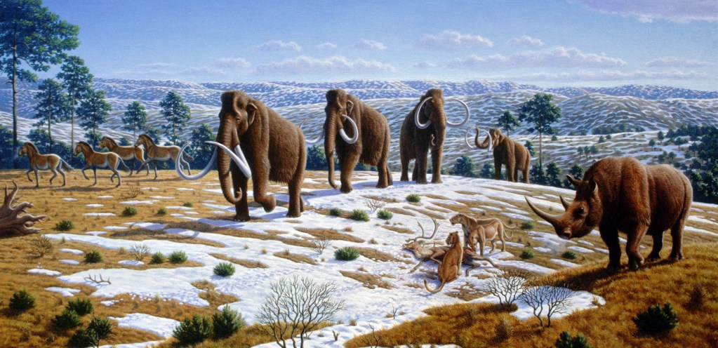 Ice age fauna of northern Spain Mauricio Antón