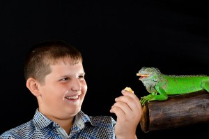 Does Your Child Love an Exotic Reptile