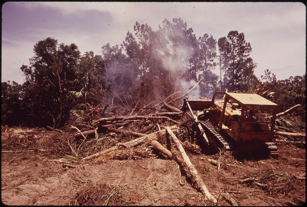 A BULLDOZER GOUGES OUT PART OF A FOREST FOR A GOLF COURSE ON THE SEABROOK ISLAND DEVELOPMENT ON JOHN'S ISLAND NARA
