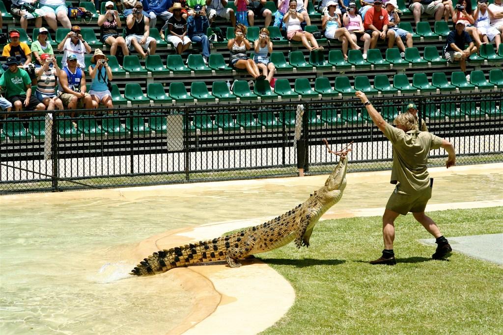 Steve irwin at Australia zoo